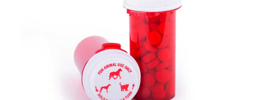 Where To Find a Safe Online Pet Pharmacy?