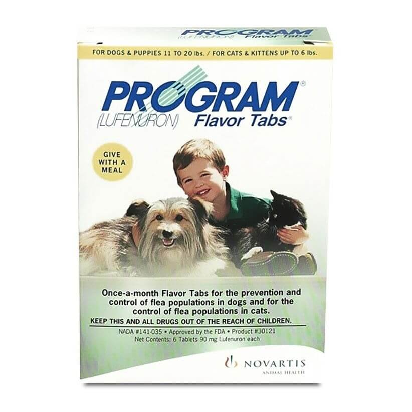 Program medicine for pet